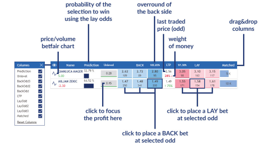 Grid view | User Guide | Wagertool